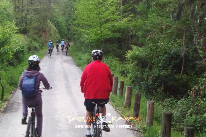 Grupo de ciclistas de ruta por el monte