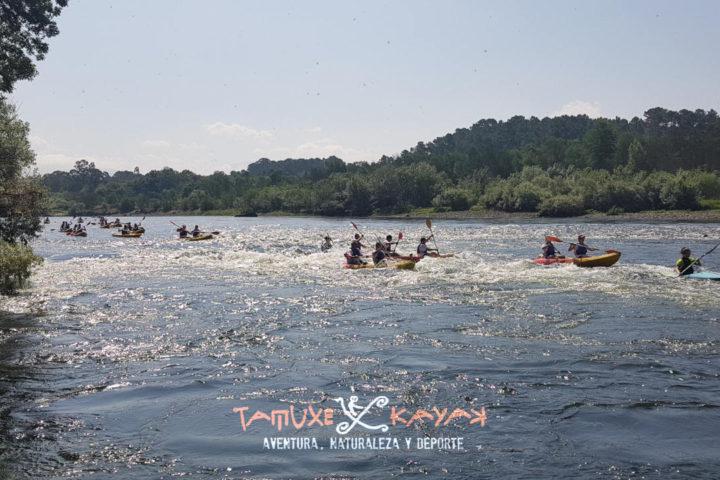 Grupo de kayaks remando en medio del río rodeados de arboles